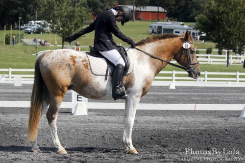 PBL-Horz-Equestrian-10