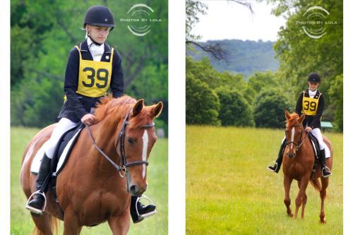 PBL-Horz-Equestrian1