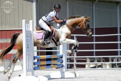 PBL-Horz-Equestrian19