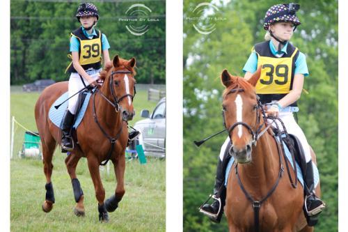 PBL-Horz-Equestrian2