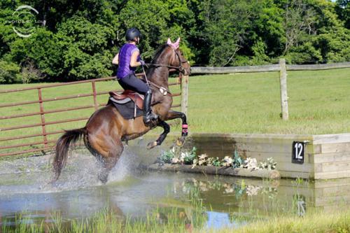 PBL-Horz-Equestrian22