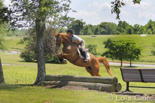 PBL-Horz-Equestrian30