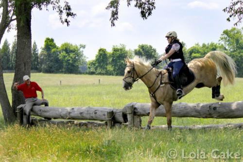 PBL-Horz-Equestrian38