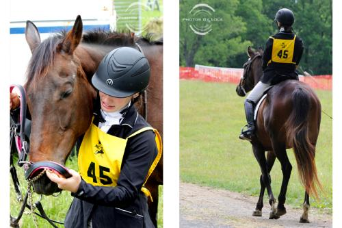 PBL-Horz-Equestrian4