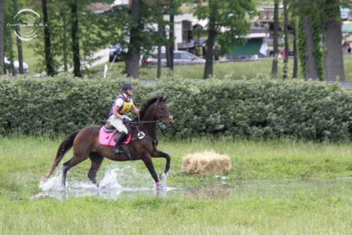 PBL-Horz-Equestrian6