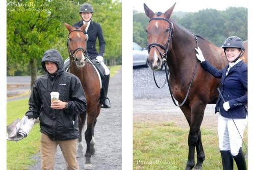 PBL-Vert-Equestrian13