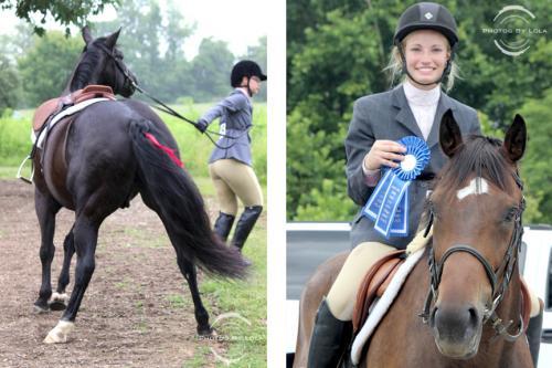 PBL-Vert-Equestrian26