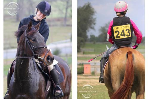 PBL-Vert-Equestrian27